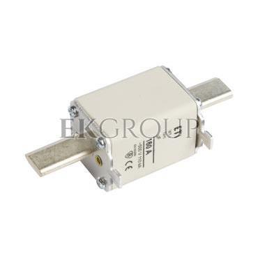 Wkładka bezpiecznikowa NH1 160A gF 500V WT-1 004139119-95851