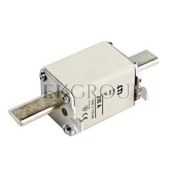 Wkładka bezpiecznikowa NH1 200A gF 500V WT-1 004139120-95853