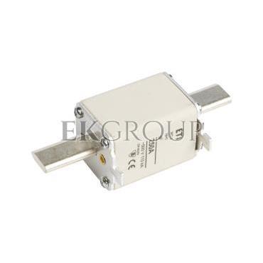 Wkładka bezpiecznikowa NH1 250A gF 500V WT-1 004139121-95857