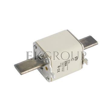 Wkładka bezpiecznikowa NH2 250A gG 500V WT-2 004114330-95873
