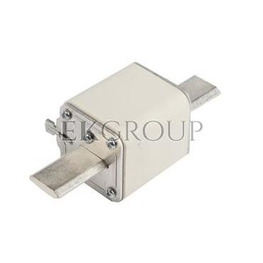 Wkładka bezpiecznikowa NH2 100A gG 500V WT-2 004114326-95876