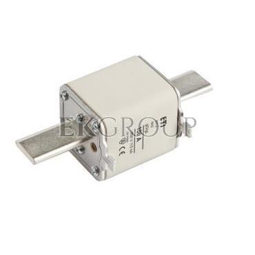 Wkładka bezpiecznikowa NH2 100A gG 500V WT-2 004114326-95877