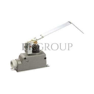 Wyłącznik krańcowy 1P metal LM-10D W0-59-251022-117469