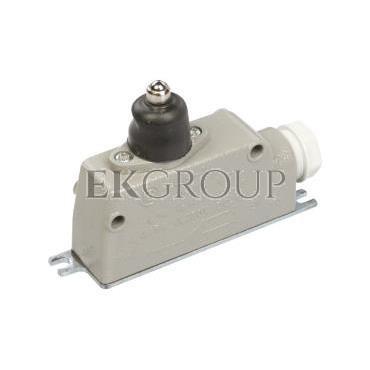 Wyłącznik krańcowy 1P trzpień LM-10 W0-59-251012-117475