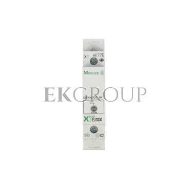 Lampka modułowa zielona 110-240V AC/DC Z-EL/G230 284922-133431